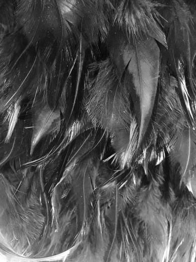 mono feather